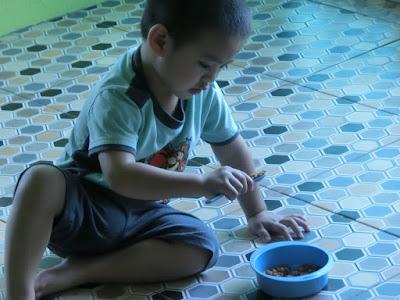 anak belajar makan sendiri