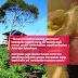 Dirasuk Penunggu Selepas Berasmara Dalam Kebun Sayur