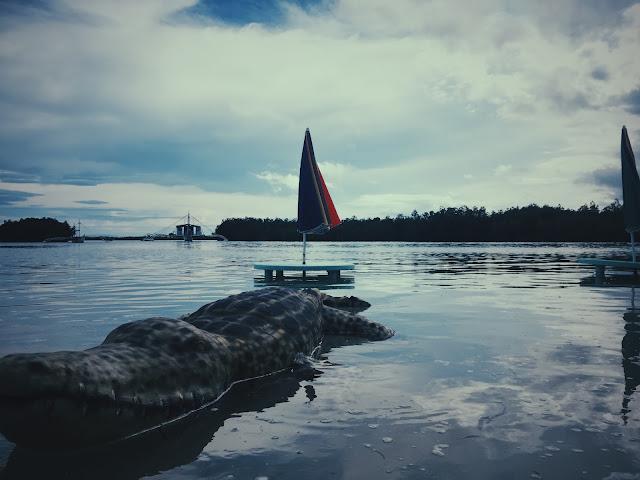 Olango Island camp
