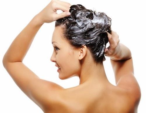 La Biodipendente Come Lavare I Capelli Con Shampoo Ecobio