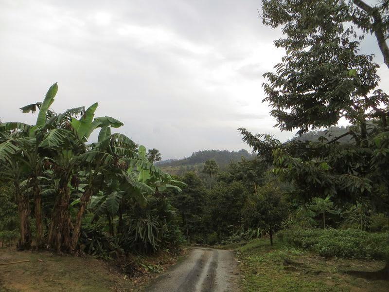 Дорога с горы Таиланд
