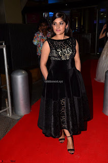 Niveda Thomas Black Sleeveless Cute Dress at 64th Jio Filmfare Awards South 2017 ~  Exclusive 023.JPG