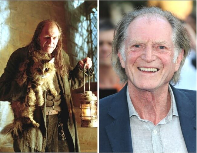 Atores de Harry Potter antes e depois