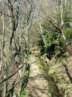 Kuenser Waalweg im Frühling