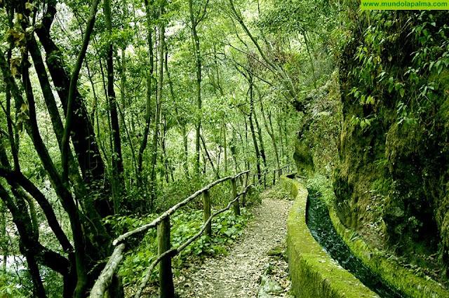 El Cabildo reabre el sendero de Marcos y Cordero tras sanear una ladera para evitar desprendimientos