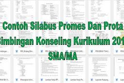 Contoh Silabus Promes Dan Prota Bimbingan Konseling Kurikulum 2013 SMA/MA