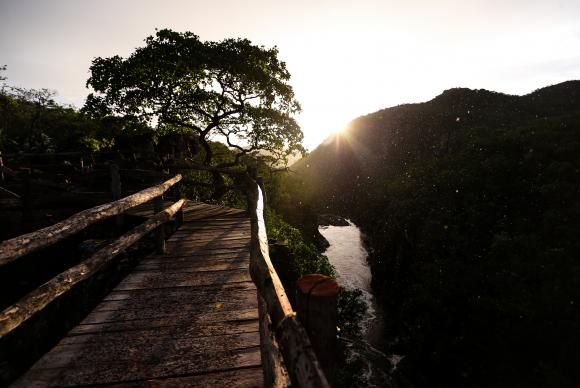Image Attribute: The expansion of the park's area could ensure the survival of almost 50 species threatened with extinction and preserve the Cerrado vegetationMarcelo Camargo/Agência Brasil