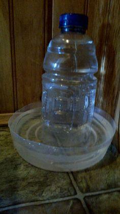 Como fazer um bebedouro para pets com material reciclavel