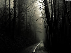 path dark road gothic backgrounds background wallpapers lonely photograph forest horror scary creepy darkness night desktop highway trail personal favorite