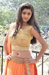Actress Pallavi Naidu Stills in Half Saree at Lord Shiva Creations New Movie Launch 0008.jpg