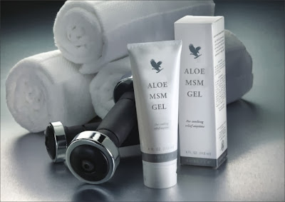Art. 205 - ALOE MSM GEL - CC 0,092