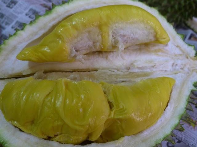 Polpa frutto Durian
