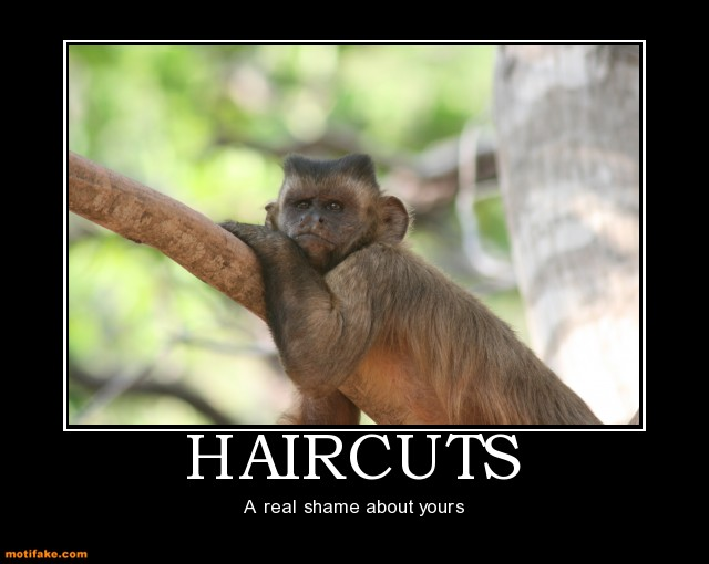 Funny Quotes About Haircuts