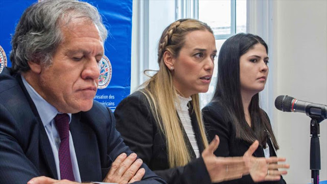 """OEA se prepara para anunciar """"ruptura constitucional"""" en Venezuela"""