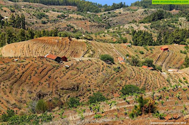 Misterios del Llano de Las Ánimas en Puntagorda