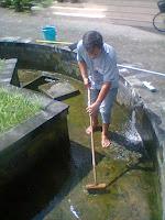 tukang bersih kolam jogja