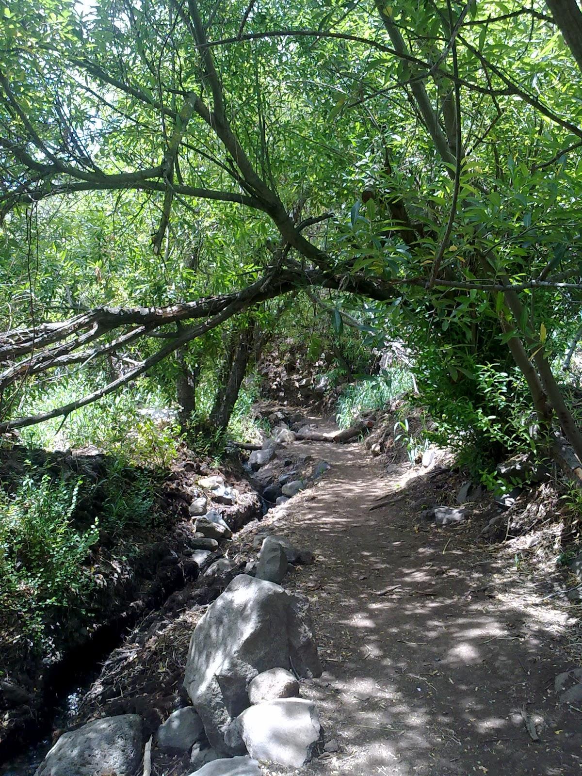 ruta barranco de los cernicalos