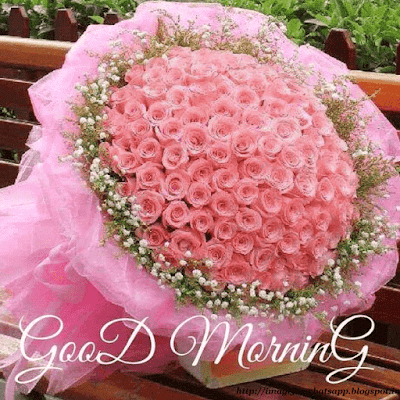 Good Morning with Flower Bookey to Friends on Whatsapp