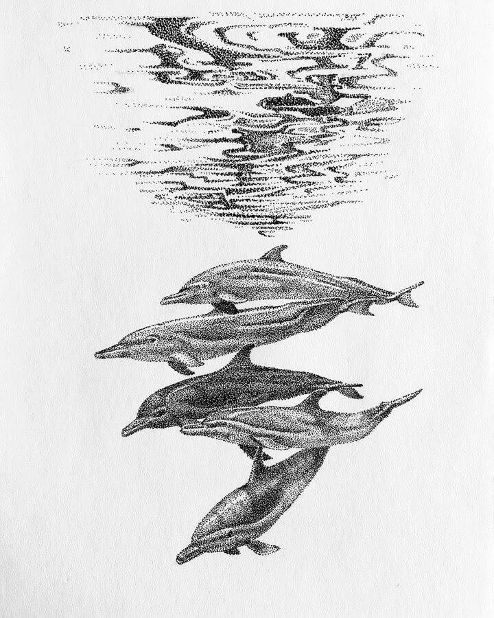 08-Dolphins-María-Lecanda-www-designstack-co