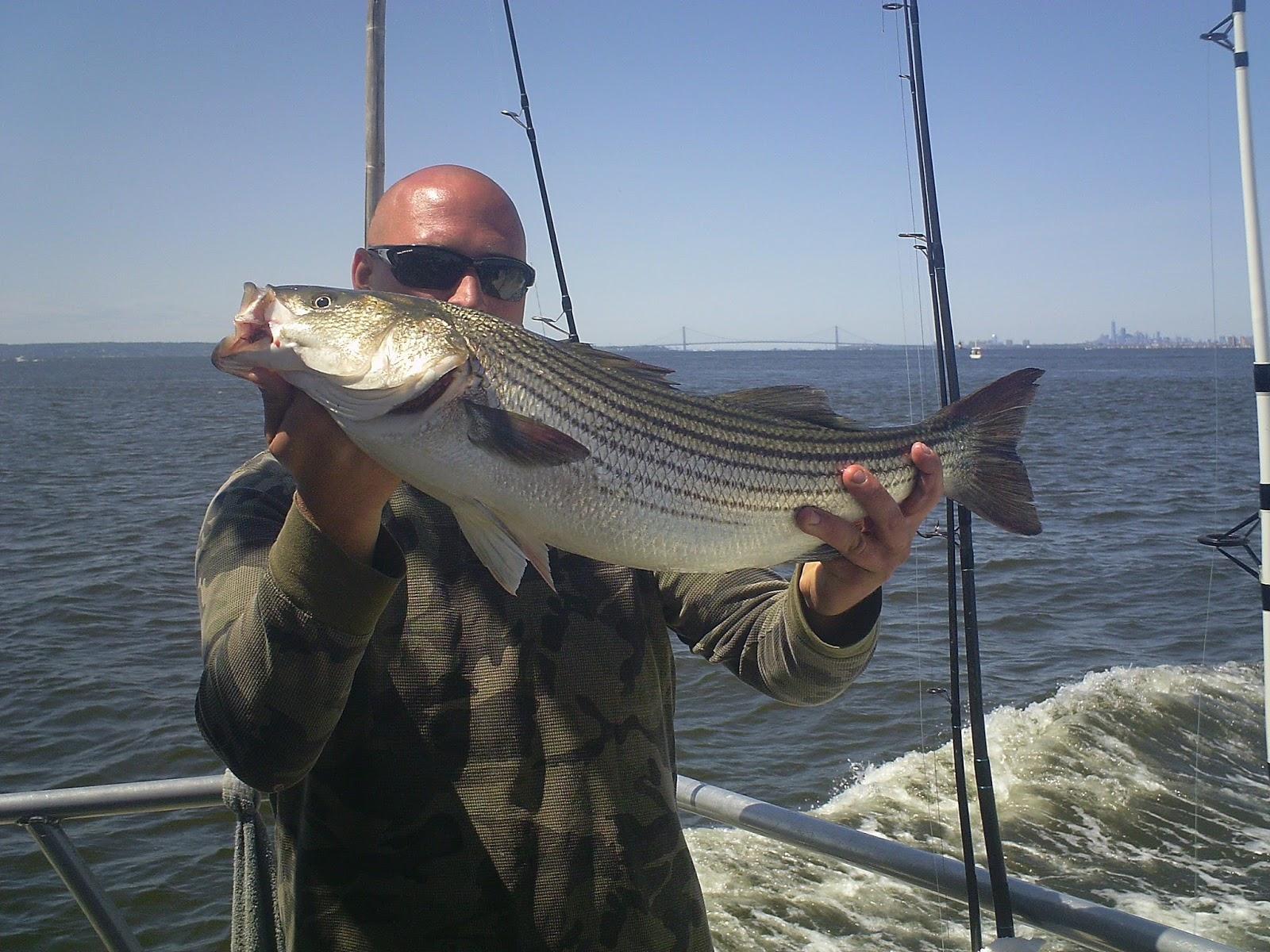 Nj salt fish 2017 05 22 seahunter atlantic highlands for Atlantic highlands fishing report