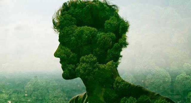 CONSCIÊNCIA AMBIENTAL OU ECOLÓGICA - A IMPORTÂNCIA DE TER E DE UTILIZAR - Conhecimento é fundamental para transformar a realidade. Mas não basta apenas conhecer os impactos causados pelo homem ao equilíbrio ambiental, também é necessário refletir, pois é da reflexão que nasce a consciência e a mudança de atitude.