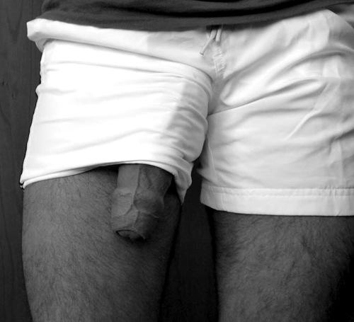 huge underwear bulge