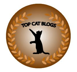 Top 35 Cat Blogs 2018