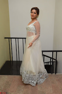 Anu Emmanuel in a Transparent White Choli Cream Ghagra Stunning Pics 037.JPG