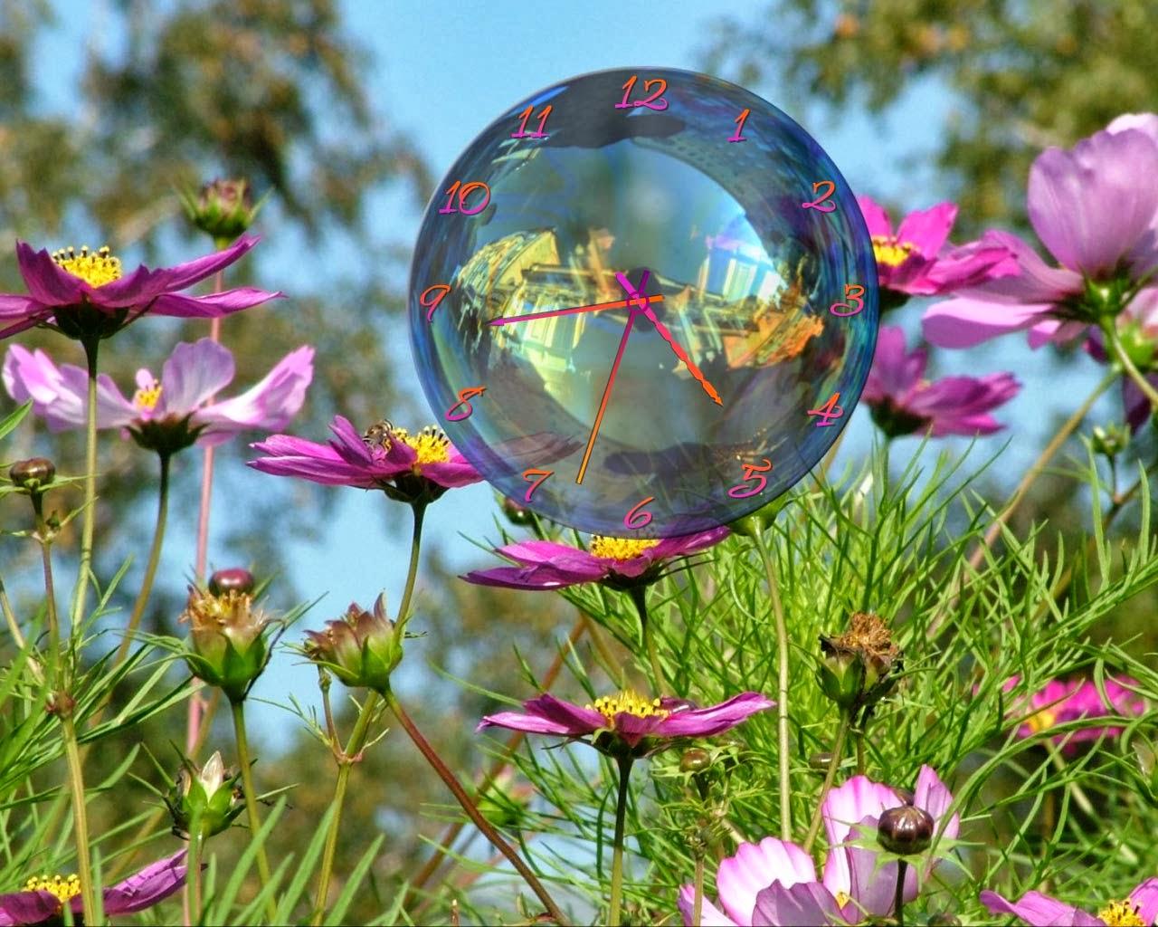 Ipad Wallpaper Little Plant In A Bubble: Garden: October 2013