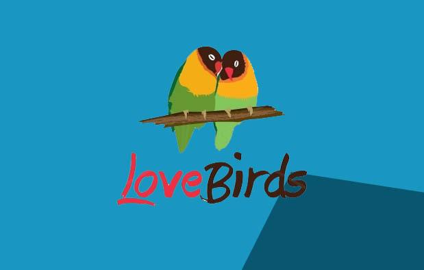 Perbedaan Lovebird Jantan dan Betina dari Fisik