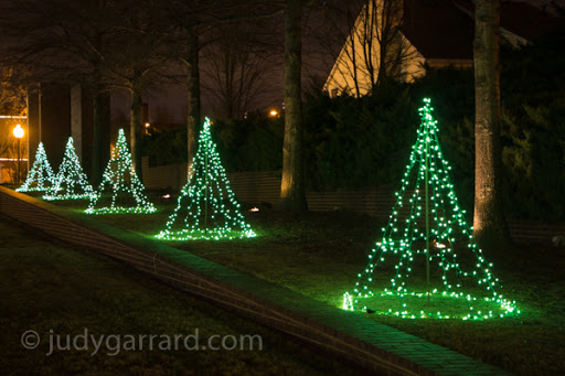Green Lighted Trees