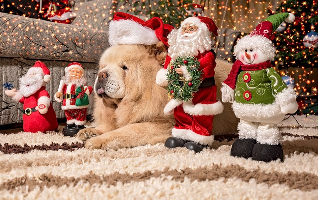 Christmas,festival,christian,jesus