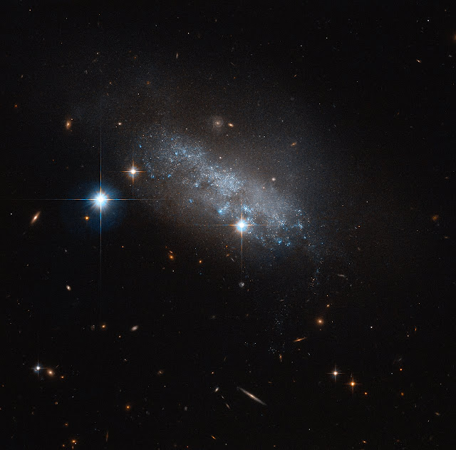 Hubble spotlight on irregular galaxy IC 3583
