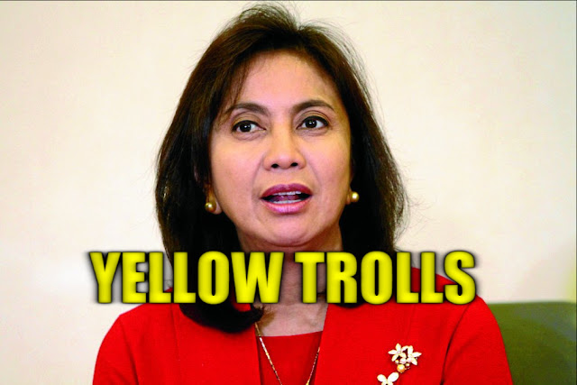 "New York University alumnus to Leni trolls: ""I don't give a flying f--k"""