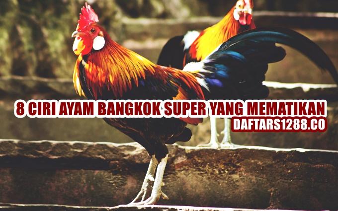 Ayam bangkok super