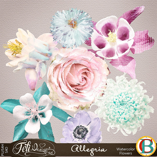 https://www.digitalscrapbookingstudio.com/digital-art/element-packs/allegria-watercolor-flowers-by-felidesigns-and-benthaicreations/