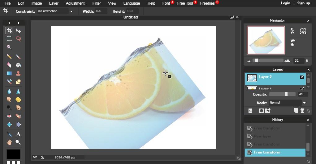 foto manipulasi buah air jeruk ikan