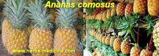 Beauty use Pineapple