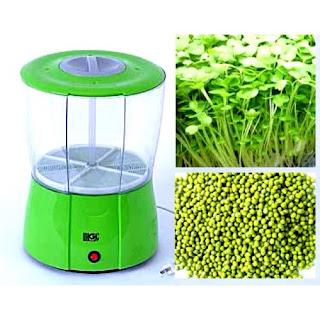Cách trồng rau mầm sạch bằng máy tại nhà