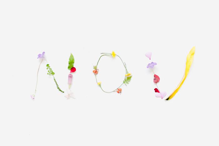 november spelt out in flowers