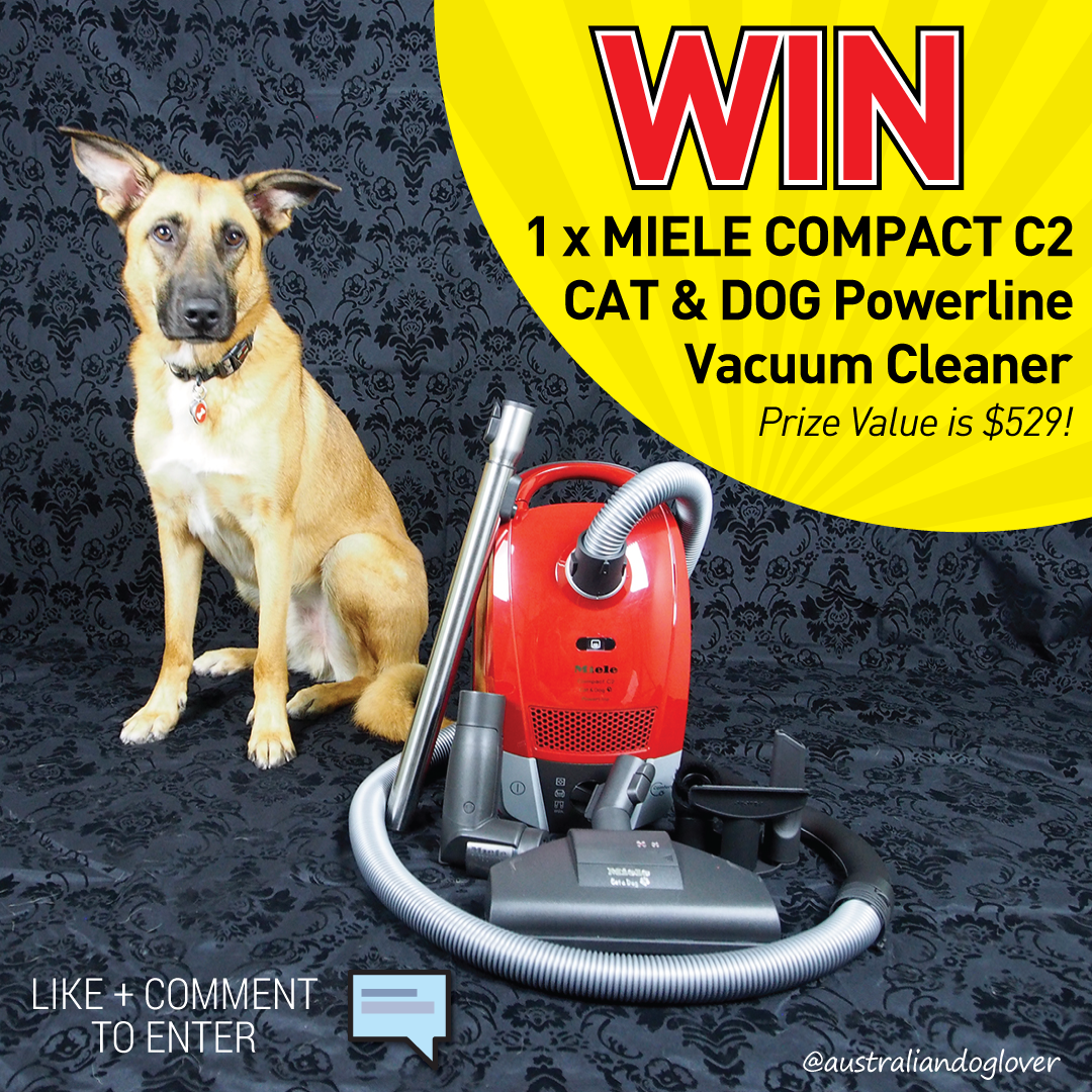Miele compact c2 cat dog competition australian dog for Miele cat dog