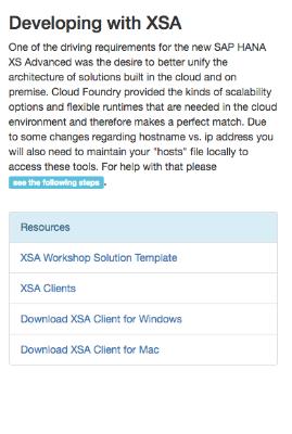 SAP HANA Developer Edition 1.00 SPS11