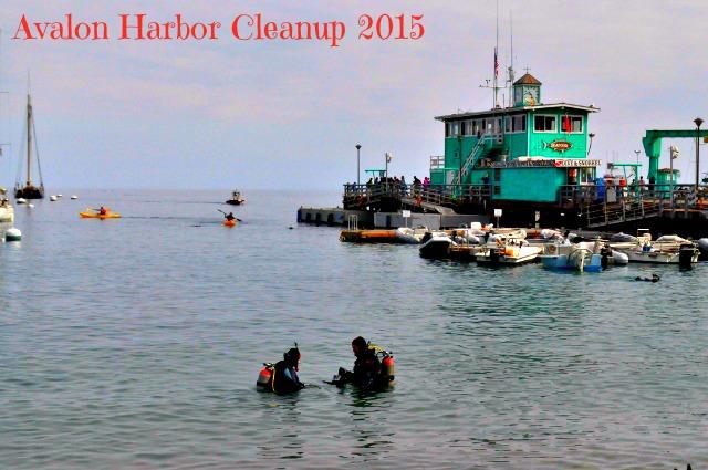 Avalon Catalina Harbor Cleanup