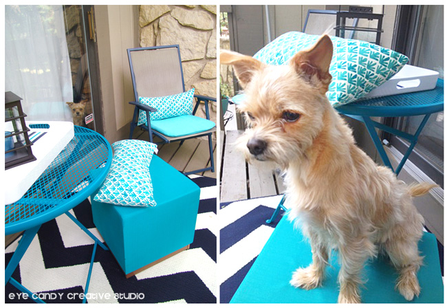 chevron outdoor rug, Chili the pup, aqua stool, Target, outdoor living