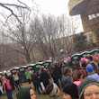 Bonding in the Porta Potty Line: Dispatches from the Women's March in Washington D.C.
