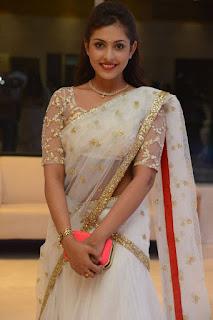 Actress Madhu Shalini Stills in Saree at Delhi Rajeswari Son Wedding Reception 0017