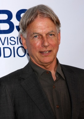 Mark Harmon Net Worth 2020