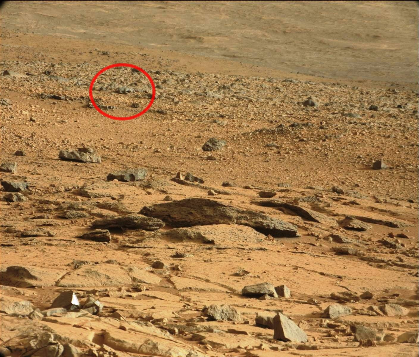 Ferret photographed on Mars by Curiosity - Feb 27, 2013