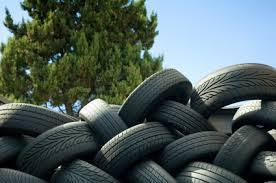 rubber tire xpino scholars