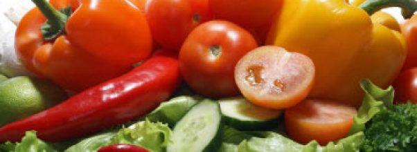 Diet mayo menurunkan berat badan dan menyehatkan